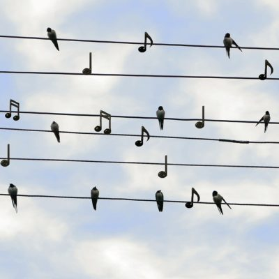 Όμιλος Μουσικής